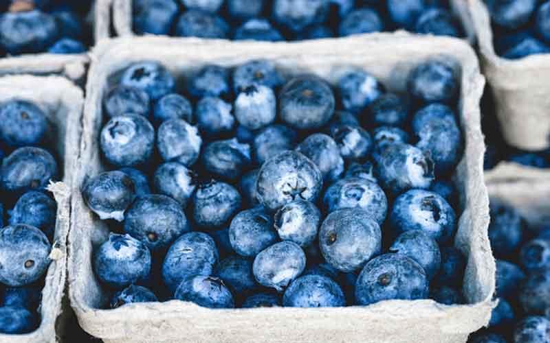 Wholesale Blueberries